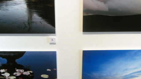 Photography on show created by local artists