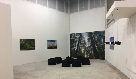 A photograph of four printed images exhibited on white walls of an empty room.