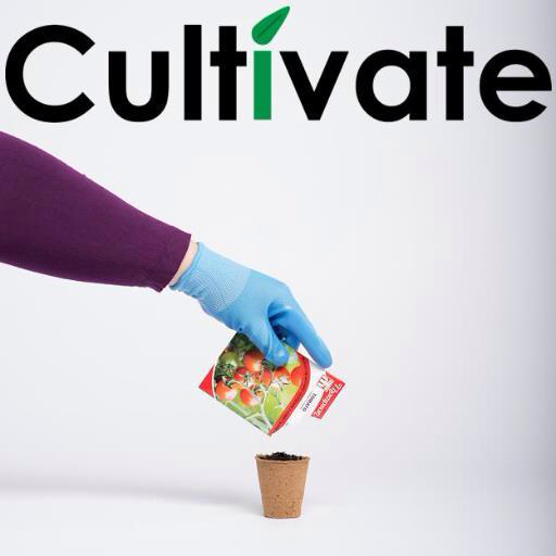 Cultivate - three year DASH mentoring project for disabled artists