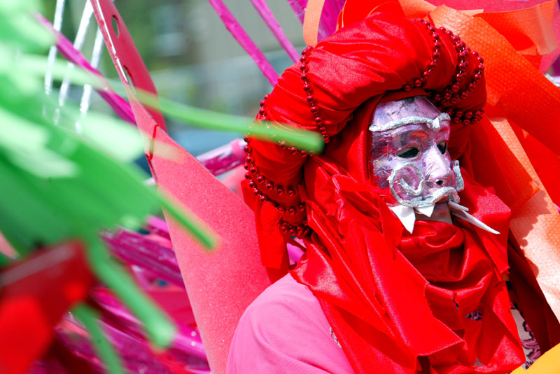 DASH Disability Arts in Shropshire participated in Carnival
