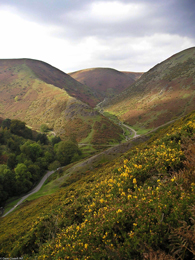 The Big Draw event at Cardingmill Valley in Shropshire.