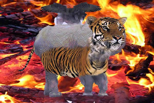 Creature Comforts in a Fiery Extravaganza by Richard Zimbler. A digitally manipulated photographic image. On a background of burning fiery embers a fictional animal stands. The animal has elephants legs, and back, a tigers head, belly and tail, wings of a bird sit on top of the elephant back.